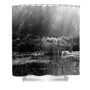 Misty Marsh - Black And White Shower Curtain