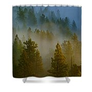 Misty Morning In The Pines Shower Curtain