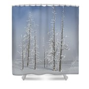 Misty Morning In Yellowstone National Park Shower Curtain
