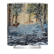 Misty Morning On Cannock Chase Shower Curtain