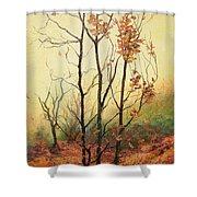 Misty Morning Shower Curtain