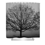 Misty Nature   Shower Curtain