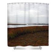 Misty Shores Shower Curtain