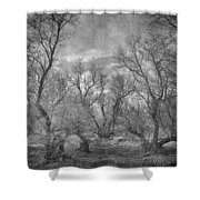 Misty Trees Tryptic Shower Curtain