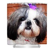 Mitzie - Shih Tzu Shower Curtain