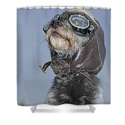 Mixed Breed Dog Dressed In Leather Cap Shower Curtain by Darwin Wiggett