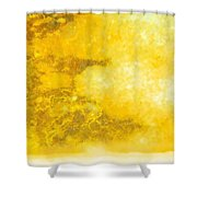 Mixed Change Shower Curtain