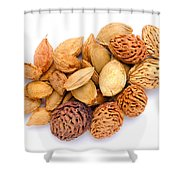 Mixed Kernels Shower Curtain
