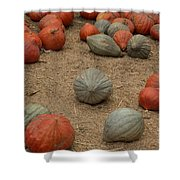 Mixed Pumpkins Shower Curtain