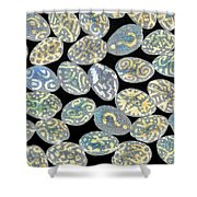 Mixed Questions Shower Curtain