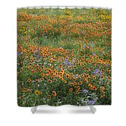Mixed Wildflowers Blowing Shower Curtain