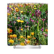 Mixed Wildflowers Shower Curtain