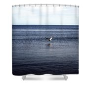 Mobile Bay 5 Shower Curtain