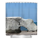 Moby Shower Curtain