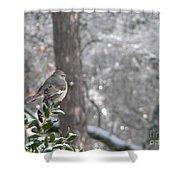 Mockingbird Back Shower Curtain