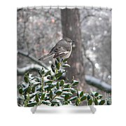 Mockingbird Cold Shower Curtain