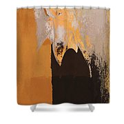 Modern From Classic Art Portrait - 01 Shower Curtain