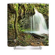 Mohawk Falls At Ricketts Glen Shower Curtain
