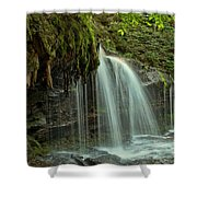 Mohawk Streams And Roots Shower Curtain
