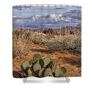 Mojave Desert Cactus Shower Curtain