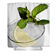 Mojito Detail Shower Curtain