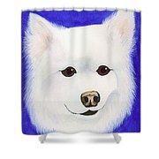 Molly The American Eskimo Dog Shower Curtain