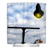 Molly's Window Shower Curtain by Bob Orsillo