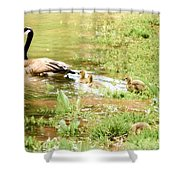 Mom And Babies Swimming Shower Curtain