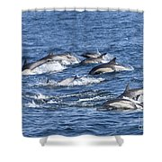 Mom And Baby On The Go Shower Curtain