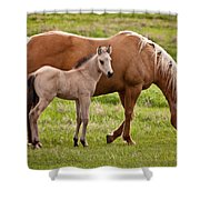 Mom And Foal 2 Shower Curtain