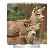 Mom And Junior Shower Curtain