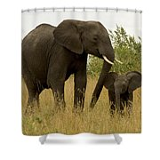 Mom And Little Shower Curtain