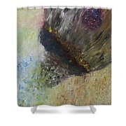 Moment Of Creation Shower Curtain