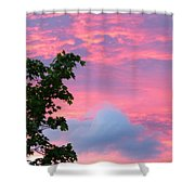 Momentary Magnificence Shower Curtain