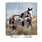 Momma And Baby In The Wild Shower Curtain