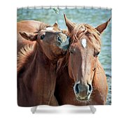 Mommy And Me Shower Curtain
