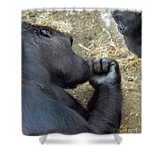 Mommy Are You Asleep Shower Curtain
