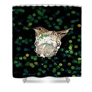 Mommy Hummingbird In The Nest Shower Curtain