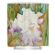 Mom's Iris Shower Curtain