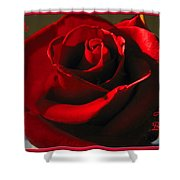 Mom's Red Rose Happy Birthday Wife Shower Curtain