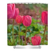 Mom's Spring  Shower Curtain