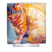 Mona Lisa's Rainbow Shower Curtain by Kimberly Santini
