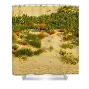 Monahans Sandhills Shower Curtain