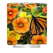 Monarch Among The Flowers Shower Curtain