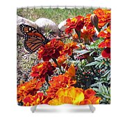 Monarch Among The Marigolds Shower Curtain