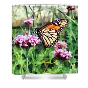 Monarch Butterfly On Pink Lantana Shower Curtain