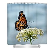 Monarch Butterfly On River Shower Curtain