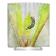Monarch Caterpillar - Digital Watercolor Shower Curtain