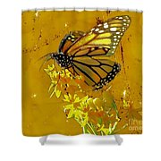 Monarch On Gold Shower Curtain