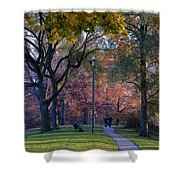 Monarch Park - 133 Shower Curtain